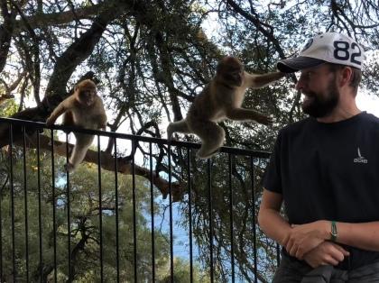 Sam + monkey